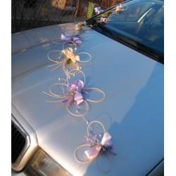 Výzdoba auta- motýlí duet