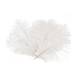 Pštrosí peří délka cca 20 cm
