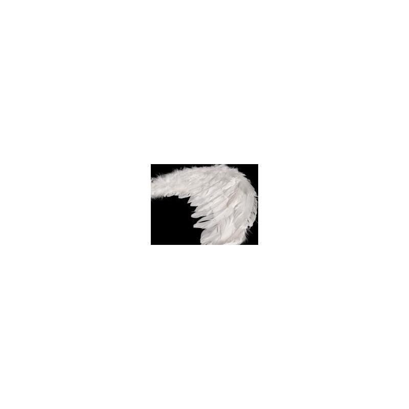 Andělská křídla 35x45 cm 2. jakost - Svatby-Verixlenka.cz 2b93ebecc1